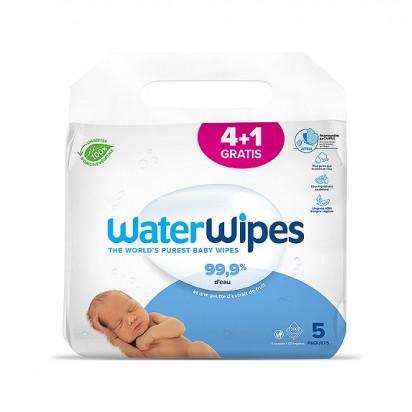BLUE BERRY 60 comprimés